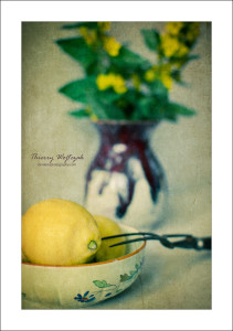 citrons_on